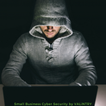 VALiNTRY Security Consulting Services